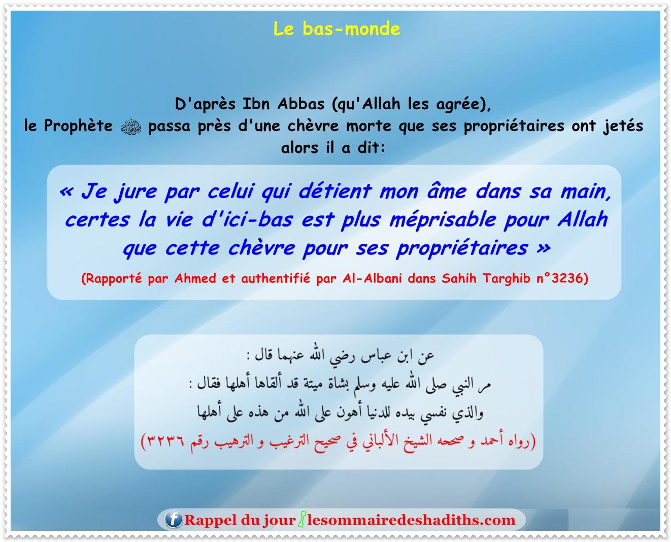 Le bas-monde (Ibn Abbas)
