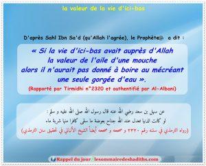 hadith la valeur de la vie d'ici-bas (Sahl Ibn Sa'd)