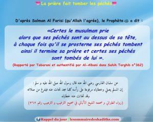 La prière fait tomber les péchés (Salman Al-Farissi)
