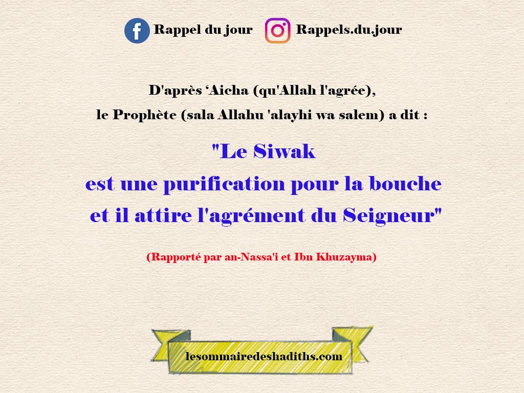 Aicha - Les bienfaits du Siwak