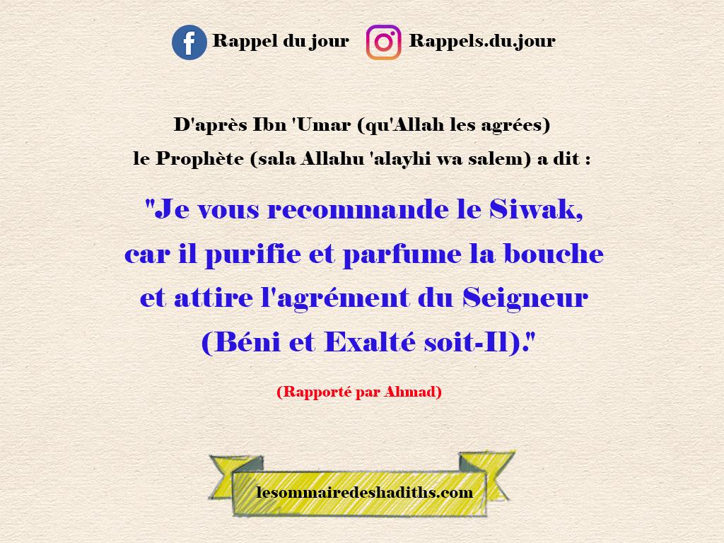 Ibn 'Omar - Le Siwak purifie et parfume la bouch
